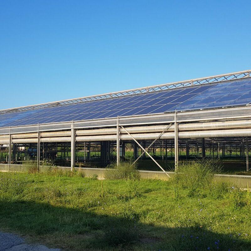 qesco impianti fotovoltaici energia pulita consulenza certificazione ecobonus